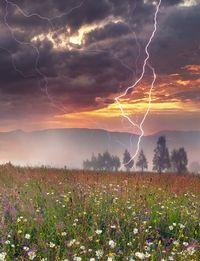 Wahrscheinlichkeit Vom Blitz Getroffen Zu Werden